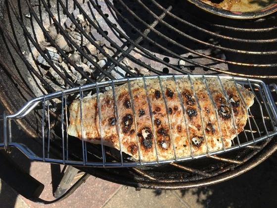 Grilled snapper fillet